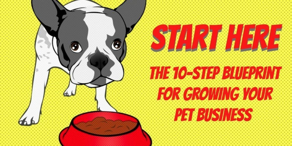 blueprint to start a dog walking pet sitting business