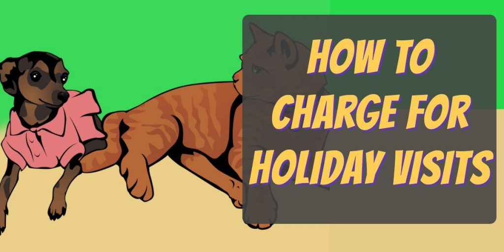 holiday charges dog walking pet sitting