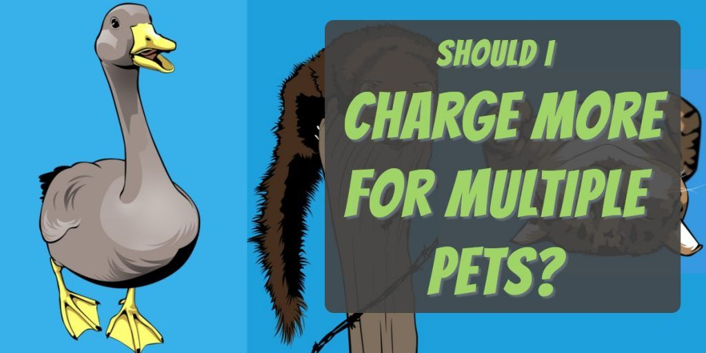 should you charge more for multiple pets
