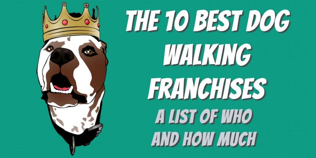 list of top 10 dog walking franchises