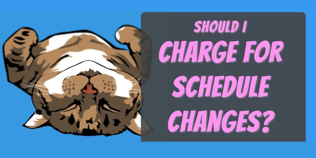 dog walking pet sitting schedule changes