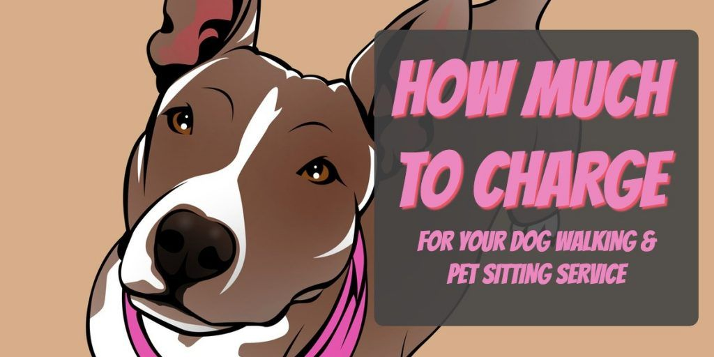 how much to charge for dog walking and pet sitting pet business masters. Black Bedroom Furniture Sets. Home Design Ideas