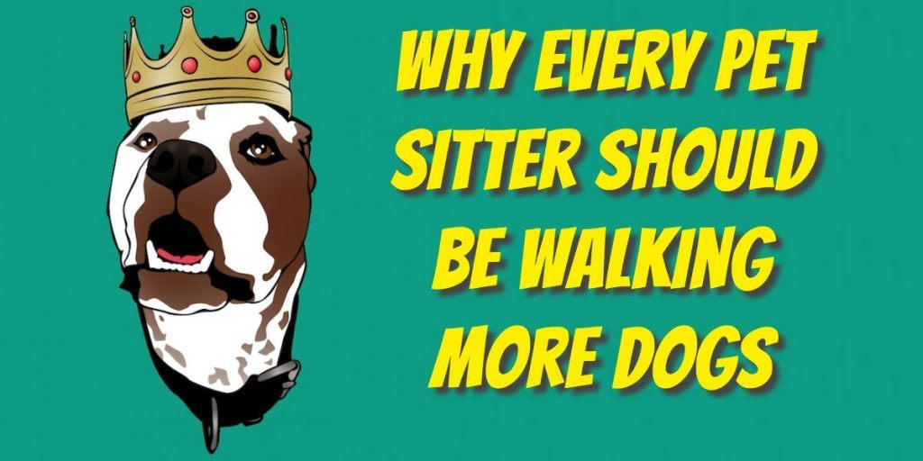 dog walking pet sitting business model